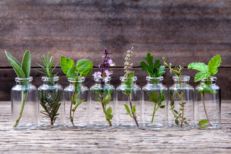 best essential oils for mental health